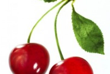 50 mL of Cherry E-Liquid for $12! Also Available PG Free!